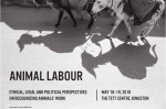 /home/lecreumo/public html/wp content/uploads/2018/04/animal labour